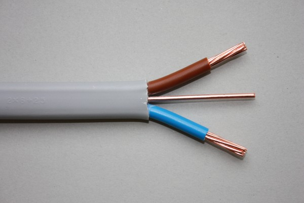 Twin Core Cable : Bs